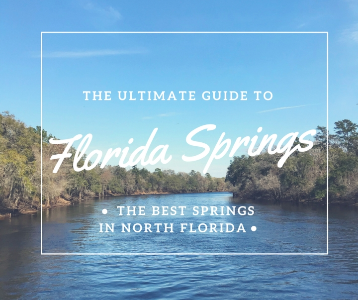The Ultimate Guide to North Florida's Springs