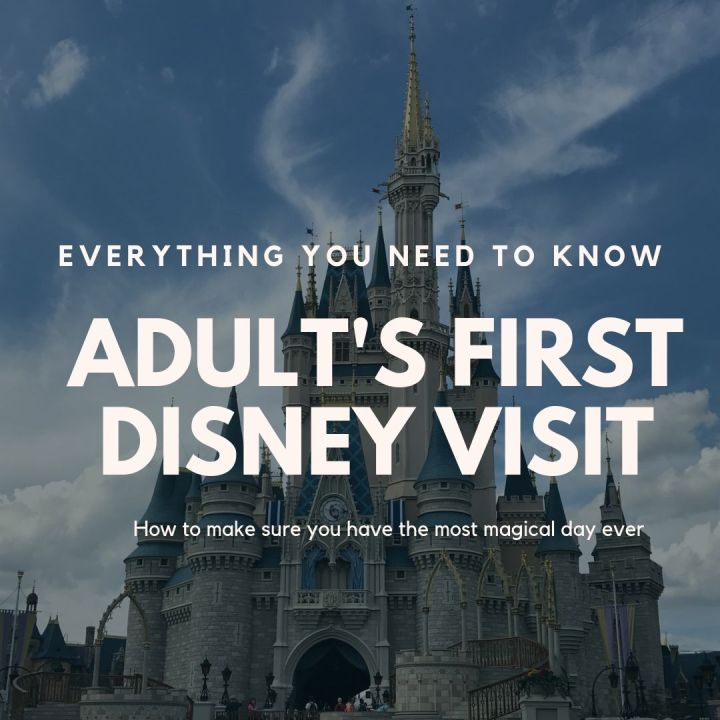 Everything You Need To Know About Taking An Adult To Disney For The FirstTime