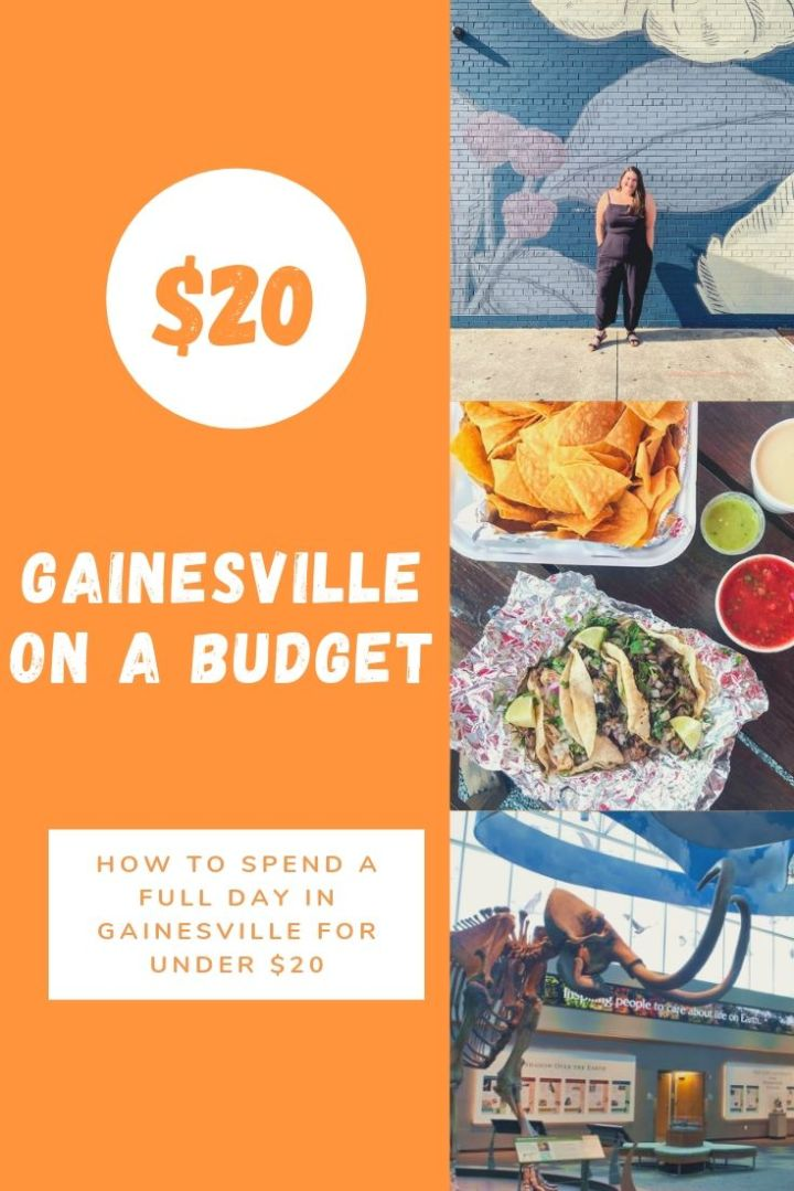 Gainesville On A Budget: A Full Day In Gainesville For $20